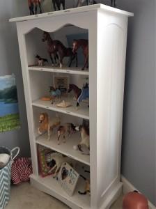 Allison's Bookcase